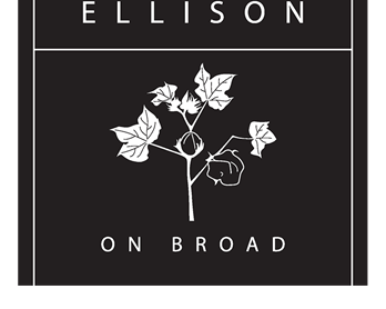 Ellison On Broad Apartments