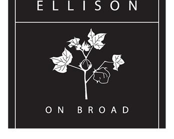 Ellison On Broad Apartments