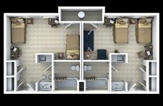Double Suite